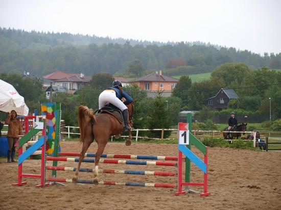 Štěpánka Gangurová s koníkem Kalif de Baune při parkurech