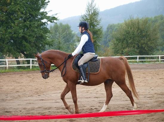 Anežka Ondráčková s koníkem Kalif de Baune při drezúrní úloze