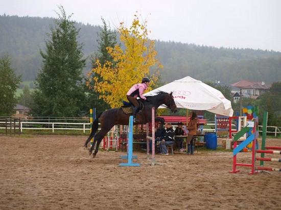 Dominika Divišová s koněm Morgan při parkuru (80 cm)