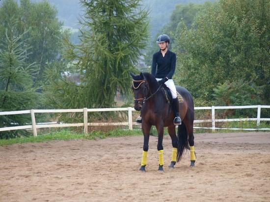 Dominika Divišová s koněm Morgan při derzúrní úloze Z1 (8. místo)