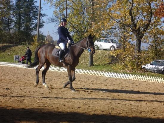 Marie Krákorová na koni Royal Able při drezurní úloze Zkoušek základního výcviku jezdce