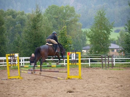 Marie Krákorová s koněm Royal Able při parkuru