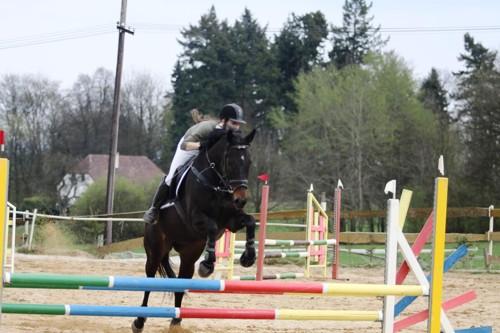 Jana Plachá na koni Beauty Princess v parkuru ZM (90 cm) - 4 tr.b.